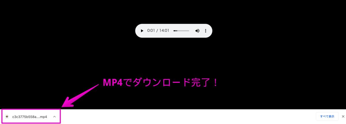 MP4形式でラジオ音源がダウンロードできました